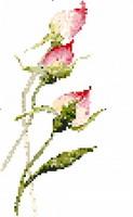 Naissance de Roses, broderie point de croix, cr�ation F�eF�edille