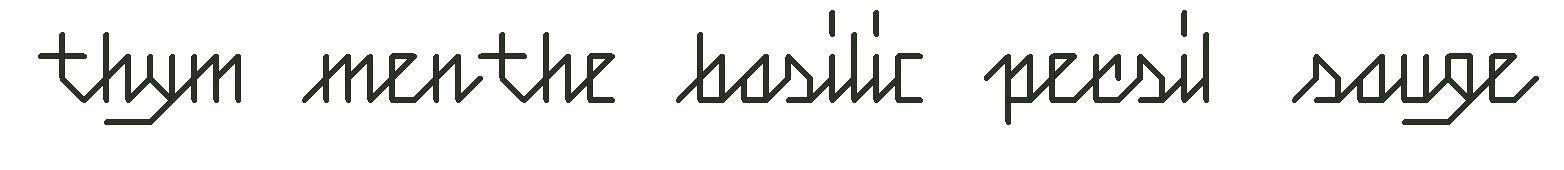 Grille de point de croix thym, menthe, basilic, persil sauge